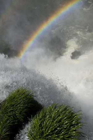 natural wonders: rainbow over the falls of the magnificent garganta del diablo at the iguazu falls, one of the seven natural wonders of the world