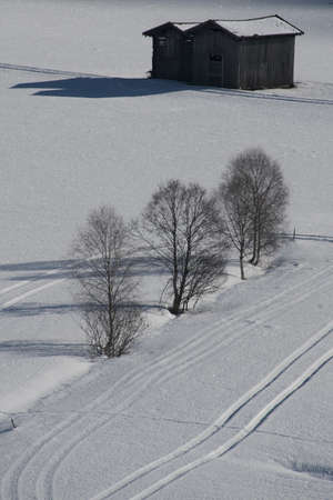 sudtirol: three trees and two huts in the snowy plateau of kematen, sudtirol