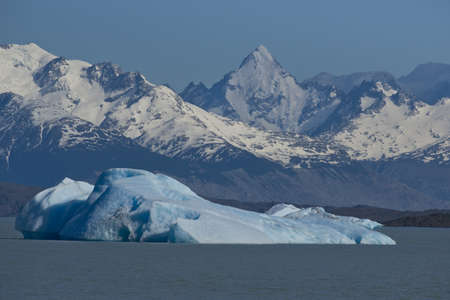 glaciares: Spectacular blue iceberg floating on the Lake Argentino in the Los Glaciares National Park, Patagonia, Argentina.