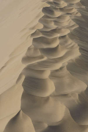 Brown sand texture on the dunes of the desert Stock Photo