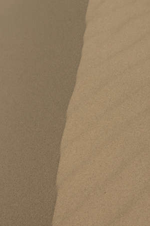 Brown sand texture on the dunes of the desert photo