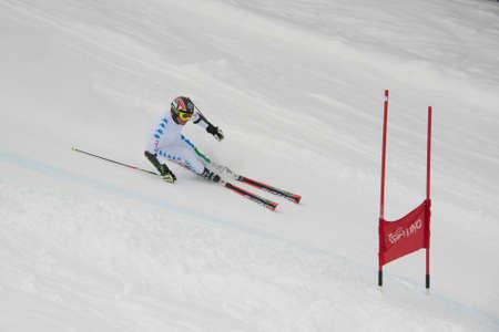 skying: CAREZZA, ITALY - 22 FEBRUARY 2013 - Unidentified italian ski national team member training in giant slalom test on the slopes of Carezza Editorial