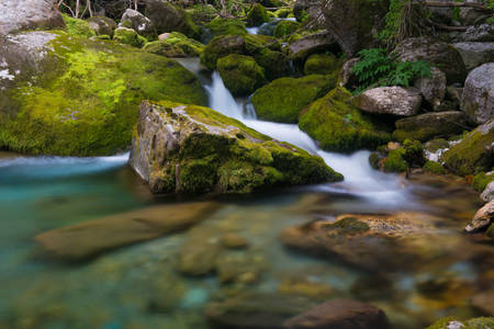 Alpine river in Valle Pesio, Piedmont Stock Photo