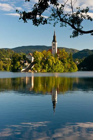 assumption: The island with the Assumption of Mary Church situated on the Lake Bled  in the Julian Alps. One of the icon of Slovenia.