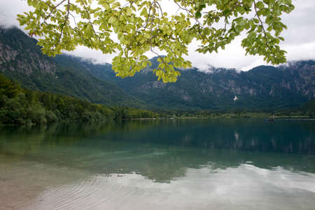 The shore of the Lake Bohinj, situated in Slovenia.
