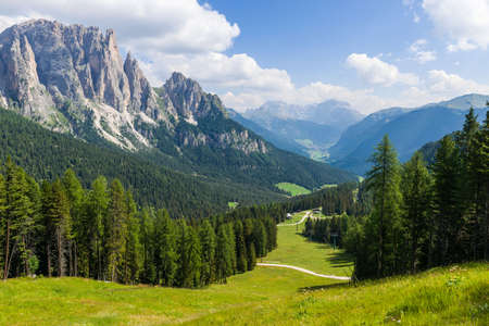 fassa: Panorama of the Rosengarten group in the Dolomites.