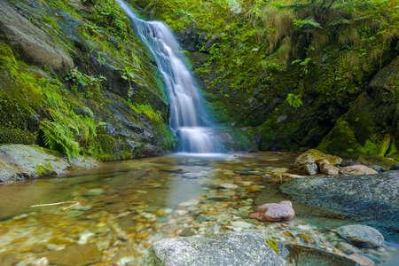 cataract waterfall: Waterfall of an alpine creek in Valle Pesio, during summer season Stock Photo