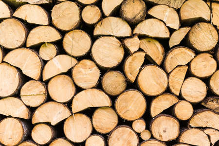 burl wood: Stack of firewood ready to be burned Stock Photo