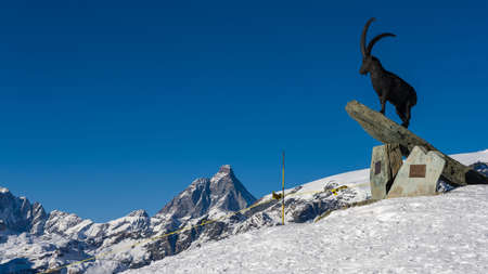 Statue of a Steinbock in Champoluc, facing the Matterhorn Reklamní fotografie