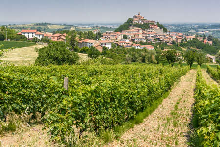 View over the vineyards and the village of Sarezzano, near Tortona, in Piedmont