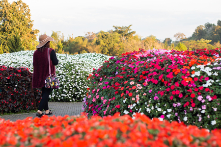 tourist woman travelling and fresh flowers bouquet decoration in natural garden , beautiful botanic background in spring . exotic various type of bundle blossom . romantic scenic .