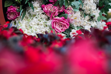 fresh rose flowers bouquet decoration in natural garden , blurred beautiful background for wedding ceremony . exotic various type of bundle blossom . romantic scenic with empty copy space .