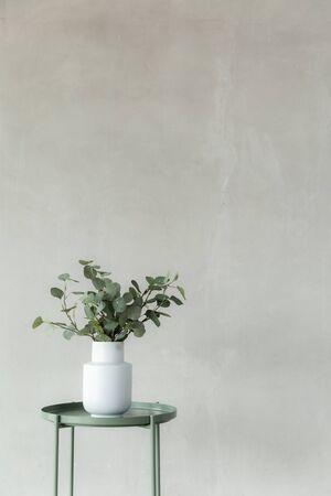 intérieur de décoration de plantes tropicales avec espace de copie, fond de ciment, style minimal d'image verticale.