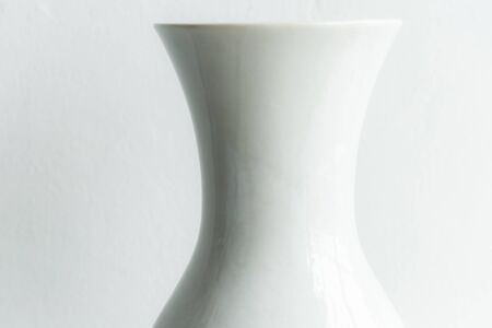 white ceramic vase , curve shape style . kitchenware and white background . Reklamní fotografie
