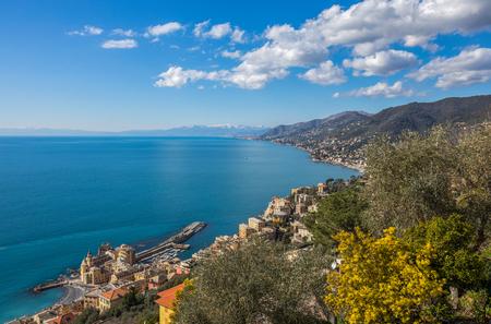Aerial view of city of Camogli and east riviera, Genoa (Genova) province, Ligurian riviera, Mediterranean coast, Italy