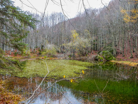 Autumnal landscape of Penna lake, a small mountain pond on Penna Mount, in the Aveto Regional Natural Park, Italy. Standard-Bild