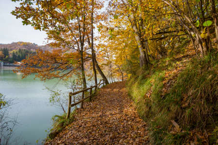 Pathway of the lake of Brugneto in autumn, province of Genoa, Antola Park, Italy