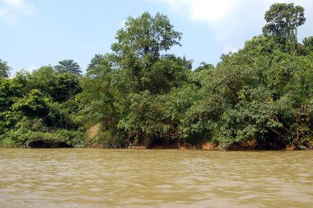 taman: Rain Forest, River, Taman Negara National Park - Best of Malaysia