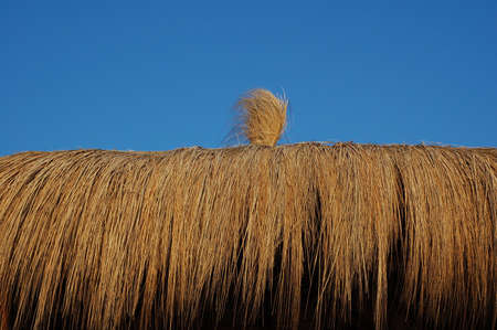 straw hut - summer time photo