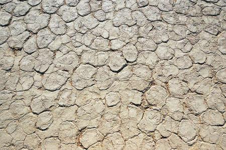lack of water: Dry terrain - Lack of water. Namibia, Sossuvlei.