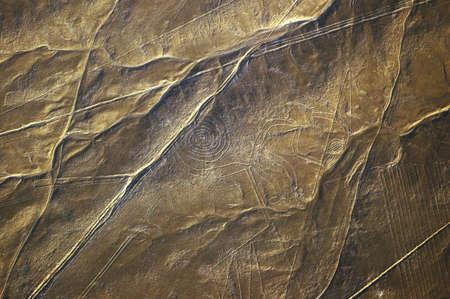 Monkey, Nazca Lines in Peru photo