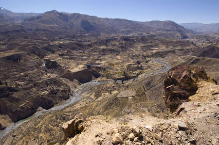 terracing: Colca Canyon Peru