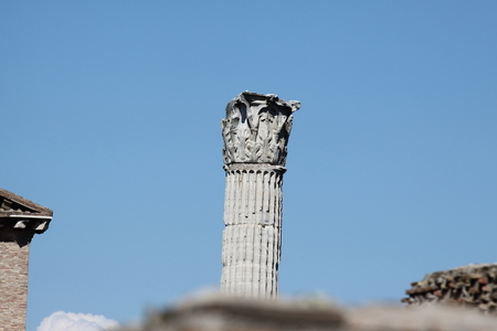 Rome, Column of Phocas in Roman Forum