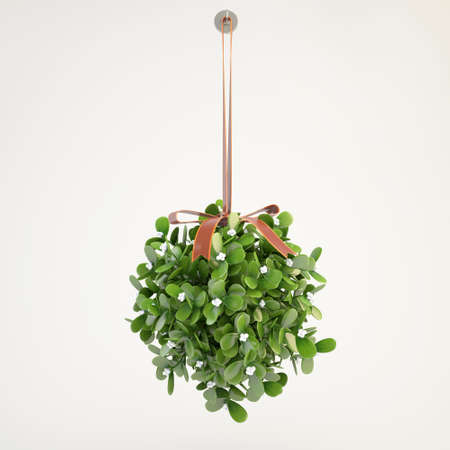 with mistletoe: mistletoe hanging from the ceiling with grey background Stock Photo