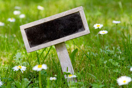 Blank signboard angular in the meadow and flowers photo