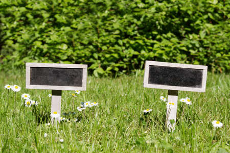 Two Blank signboard angular in the meadow and flowers photo