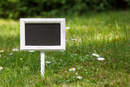 Blank signboard straight view in the meadow and flowers photo
