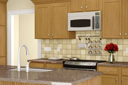 kitchen countertops: Kitchen with sink in front and decoration in background