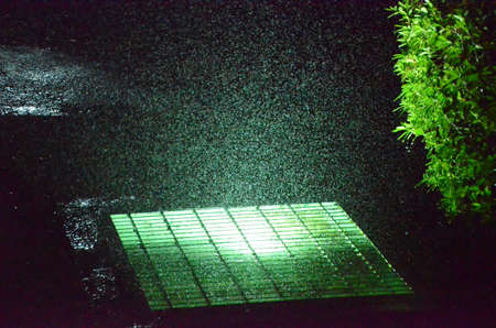 Water drops on air with light and a bush at night