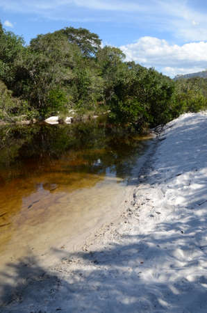 River with sand and fishes at Rio Preto State Park in Minas Gerais called Prainha (translate to little beach)