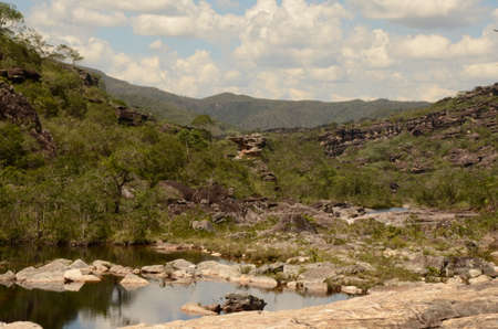River and view in Rio Preto State Park in Minas Gerais at Cachoeira da Semper-Viva (translate to Always-Alive Waterfall, with is the popular name of Actinocephalus polyanthus)