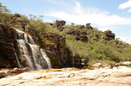 Waterfall in Rio Preto State Park in Minas Gerais at Cachoeira da Semper-Viva (translate to Always-Alive Waterfall, with is the popular name of Actinocephalus polyanthus)