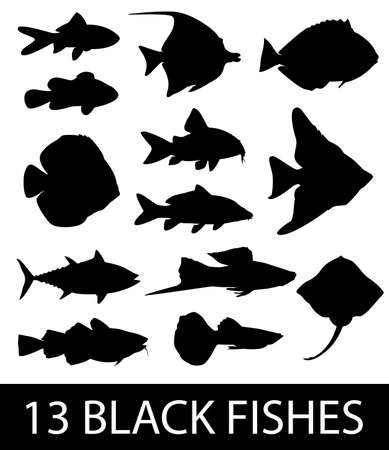 Set of 13 black fish patterns on a white background Ilustração