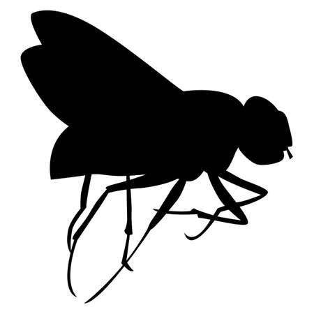 Black pattern of a fly on a white background Ilustração