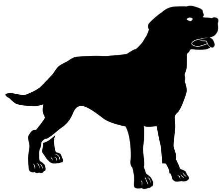 Black pattern of a labrador dog on a white background