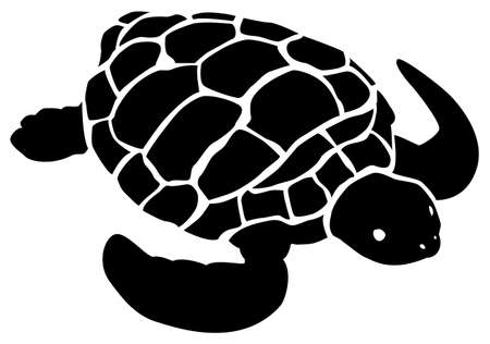 Black pattern of a turtle on a white background