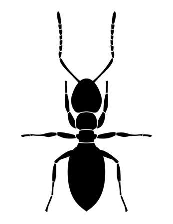 Ant black pattern on white background