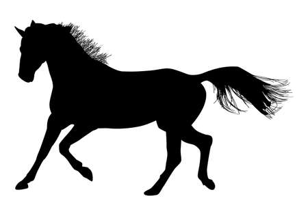 Black pattern of a horse on a white background Ilustrace