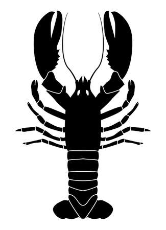 Black pattern of lobster or crayfish on a white background