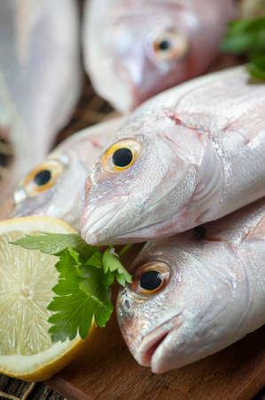 gilthead bream: Pile of fish fish market Stock Photo