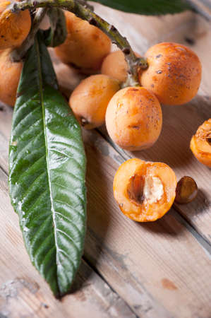 freshly picked: freshly picked loquats Stock Photo