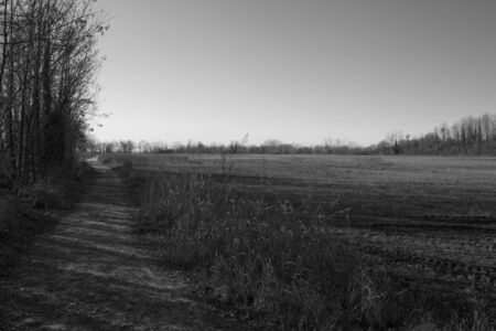 Black and White photo of fields in a sunny day photo