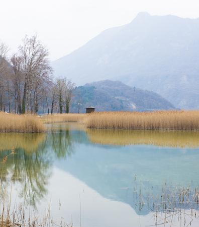 reflection: marsh reflection