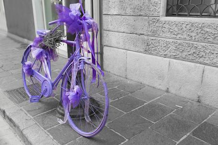 fiets volledig geschilderde blauweregen
