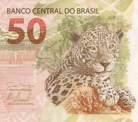 jaguar: Ilustración de Jaguar (panthera onca) en billetes de 50 reales de Brasil Foto de archivo