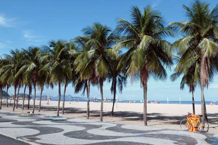 characteristic: Copacabana beach view with mosaic sidewalk, bicycle and palm trees